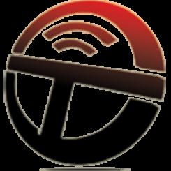 The Tagging Team logo